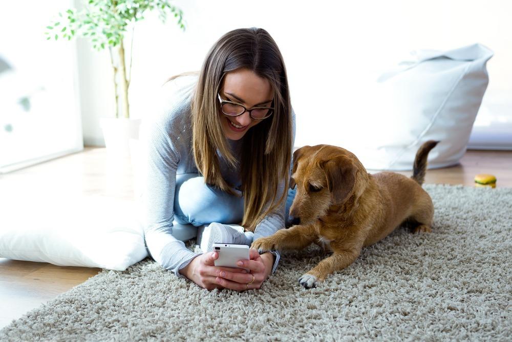 Las mascotas también necesitan un smartphone