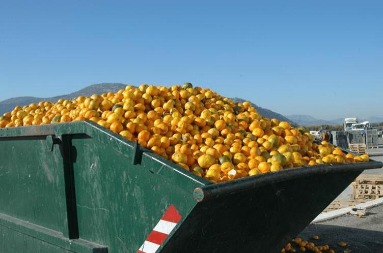 #SinDesperdicio, una campaña del BID para reducir desperdicio de alimentos en América Latina